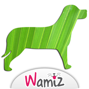 Alimentation bio pour son chien - Wamiz
